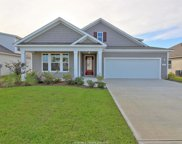 311 Great Harvest Road, Bluffton image