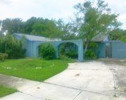 6018 Wilshire Drive, Tampa image