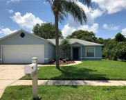 1109 Timber Trace Drive, Wesley Chapel image