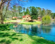 385 Pine Grove Rd, Roswell image