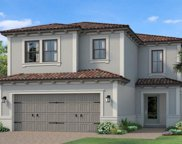 19547 Roseate Drive, Lutz image