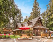 58414 State Route 410  E, Enumclaw image