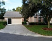 7337 Willow Brook Drive, Spring Hill image