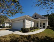 125 Sea Lavender Lane, Summerville image