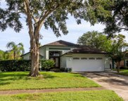 2412 Liela Lee Court, Ocoee image