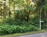 212 approx S Lake Roesiger Rd, Snohomish image
