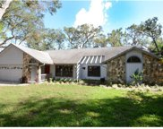 1848 Eagles Point, Apopka image