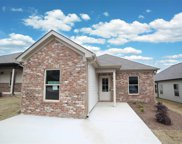 583 Kincaid Cove Ln, Odenville image