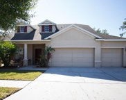 11718 Summer Springs Drive, Riverview image