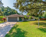 4455 Mohican Trail, Valrico image