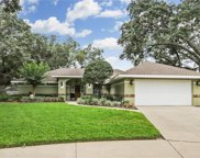 2516 Withy Court, Tampa image