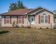 8602 Branchtree Pl, Louisville image
