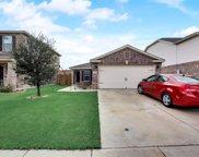 4817 Cedar Springs Drive, Fort Worth image
