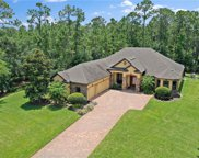 14214 Oakwood Cove Lane, Orlando image