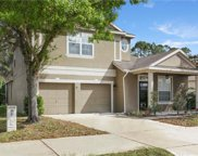 10489 Moss Rose Way, Orlando image