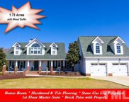 3217 Golden Nugget Drive, Clayton image