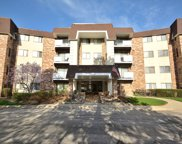 3300 North Carriageway Drive Unit 111, Arlington Heights image