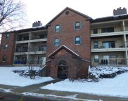 651 Hapsfield Lane Unit 305, Buffalo Grove image