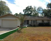 10825 Twin Palms Ranch Road, Gibsonton image