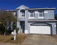14825 Hidden Oaks Circle, Clearwater image
