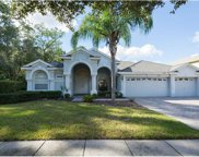 17308 Emerald Chase Drive, Tampa image