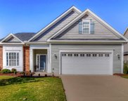 244 Sweet Violet Drive, Holly Springs image