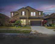 11810 Cross Vine Drive, Riverview image