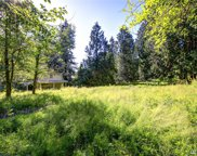 25600 SE Tiger Mountain Rd, Issaquah image