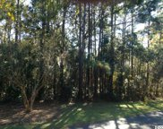 Lot 99 Shearwater Ct., Georgetown image