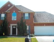 355 Oak Leaf Cir, Pell City image