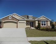 16435 Good Hearth Boulevard, Clermont image