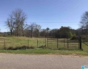 Highway 440 Co Rd 440 Unit 5 acreas  Lot 4, Chelsea image
