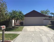 7003 Westminster Street, Tampa image