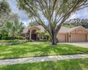 3021 Homestead Court, Clearwater image