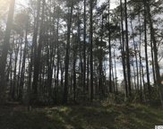TBD Caines Landing Rd., Conway image