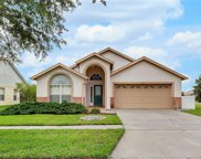 16010 Hawk Hill Street, Clermont image