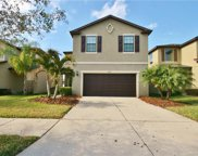 4509 Paper Mulberry Place, Riverview image