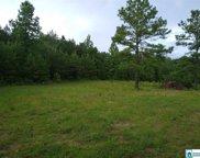 2700 Elvester Rd Unit 29 acres, Warrior image