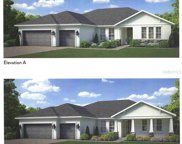 14112 Tomentosa Avenue, Riverview image
