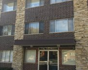 10210 Washington Avenue Unit 311, Oak Lawn image