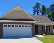 1005 McCall Loop, Conway image