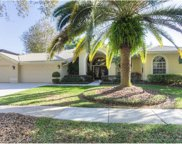 17823 Osprey Pointe Place, Tampa image