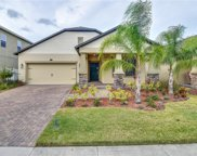 12237 Great Commission Way, Orlando image