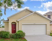 12243 Fawn Brindle Street, Riverview image