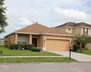 20621 Great Laurel Avenue, Tampa image