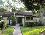 299 Cactus Hill Court, Royal Palm Beach image