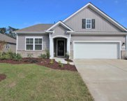 TBD Shorthorn Way, Myrtle Beach image