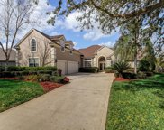 8209 PERSIMMON HILL LN, Jacksonville image