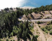 0 Morgan Creek 3 Acre, Ronald image