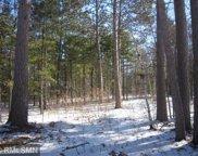 TBD Pine Cone Lane NW, Walker image
